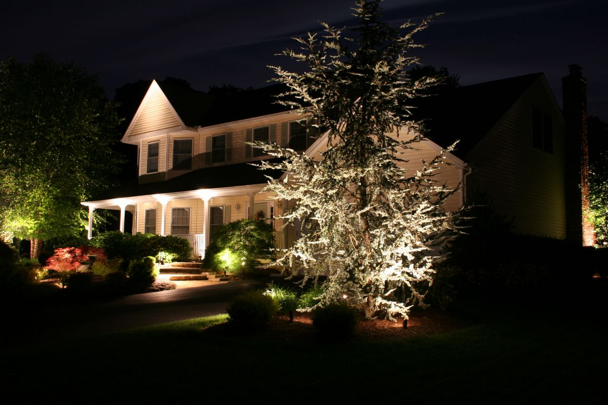 lighted front yard